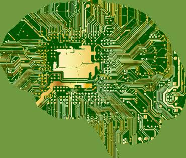 Top 10 toitu ajule - toetavad kontsentreerumisvõimet ja mälu